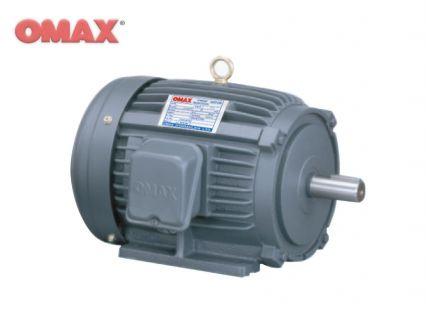 Standard Horizontal Motor (BSW)