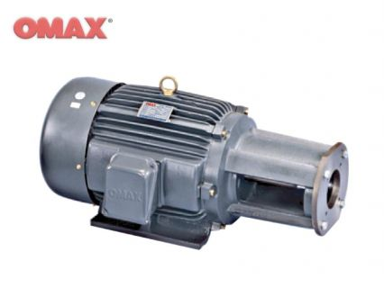 Hydraulic Long Coupling Horizontal Motor (HSWG)