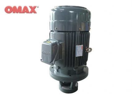 Hydraulic Long Coupling Vertical Motor (HSLG)