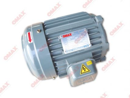 Induction Drive Motors